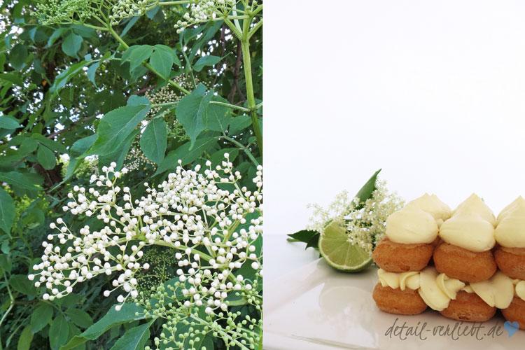 www.detail-verliebt.de: Erdbeeren und Holunder sind die leckerste kulinarische Kombination des Frühlings. Ich kombiniere diese beiden Zutaten zu einer raffinierten Hugo-Tiramisu.