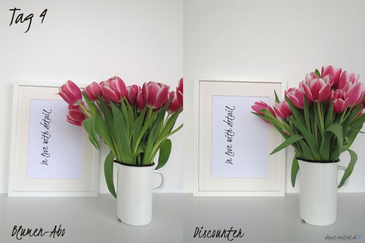 Blumentest Tag 4