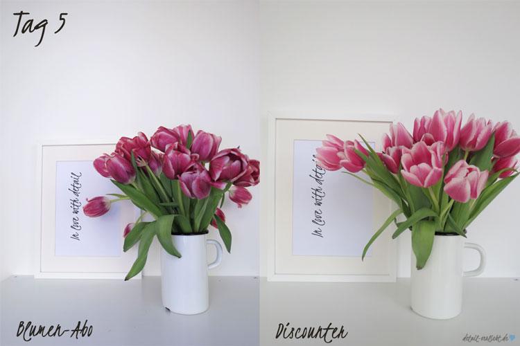 Blumentest Tag 5