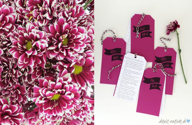 Chrysanthemen und Blumenlabel