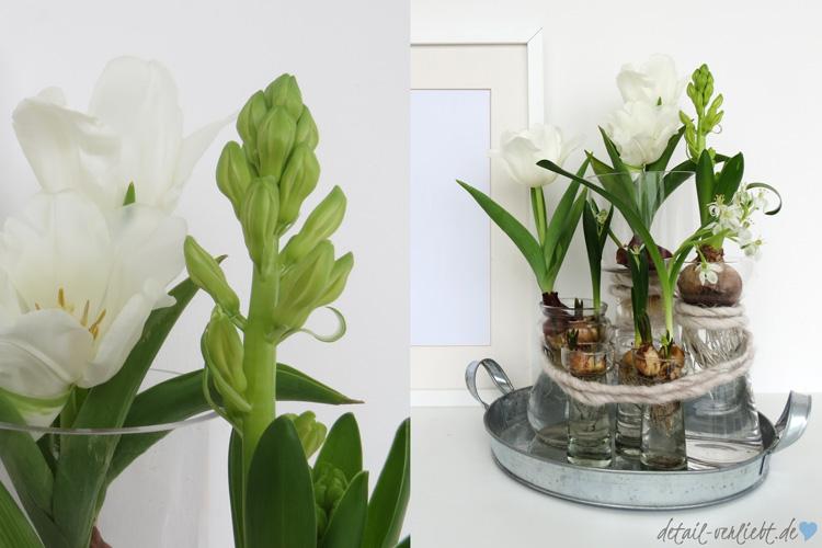 fr hbl herzwiebeln in der vase diy mit blumen detail. Black Bedroom Furniture Sets. Home Design Ideas