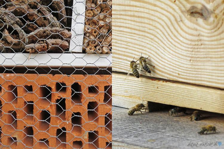 Wildbienenhotel und Honigbienen