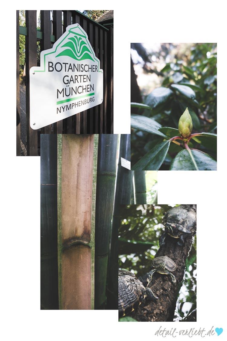 www.detail-verliebt.de: Der Botanische Garten in München-Nymphenburg ist ein Geheimtipp für Familien mit Kindern.