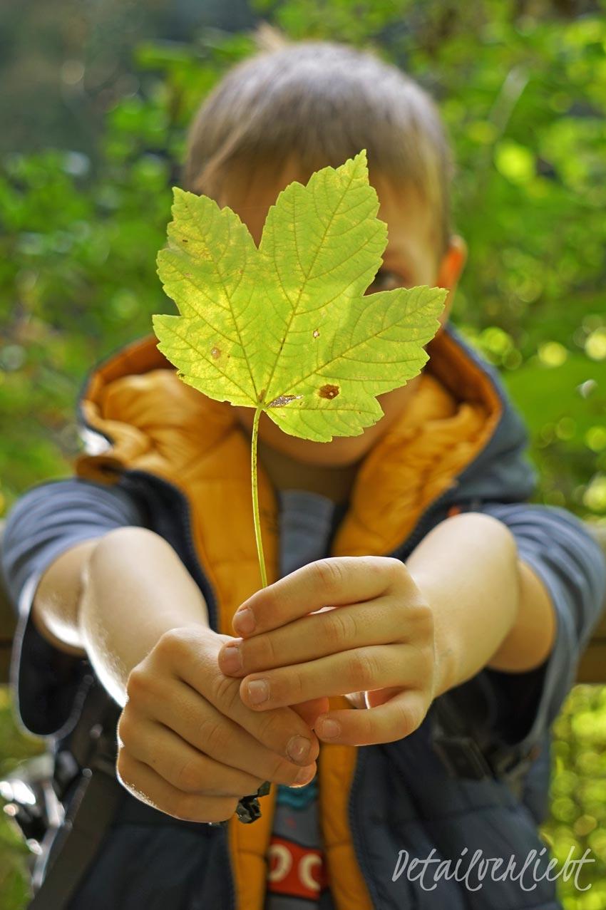 www.detail-verliebt.de: Der Herbst beschert uns zurzeit ein fantastisches Farbenspiel: Die Blätter färben sich und die Abendsonne taucht den Himmel in ein leidenschaftliches rot-orange. So kommt garantiert keine Herbstdepression auf. Hier kommen 8 weitere Dinge, die mir Herbst guttun: von entspannter Morgenroutine bis Auszeiten einplanen.
